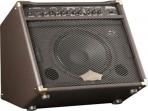 Amplificador  Washburn  WA 30  para Guitarra Acústica - Efectos -   Entrada de Micrófono 30 Watts  RMS