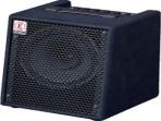 Amplificador  DAVID EDEM PARA BAJO  EC 10 ( PRODUCTO AGOTADO )