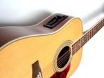 Guitarra Kapok 12 Cuerdas Metalicas EQ 4  Bandas Electroácustica