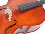Violoncello Azalea 1/2 Incluye Arco Resina y Funda (PRODUCTO AGOTADO)