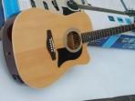 Guitarra Washburn Folk   GWL2 CEL PACK