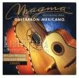 Encordado Magma  GM 100 G  Juego Cuerdas De 6 Para Guitarron Mexicano