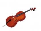 Violoncello Giulianni  1/2 Incluye Arco - Resina y Funda (PRODUCTO AGOTADO)