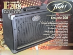 Amplificador PEAVEY  E 208 Para Guitarra Electroacústica  2 Parlantes 30 Watts