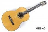 Cort AC 200  - NAT, Guitarra Clásica  Brillante, Cuerdas Nylon Incluye Funda