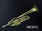 Trompeta Allegro Gold 6416 L  Dorada, Incluye Estuche