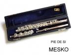 Flauta Traversa Fontai - Lubeck LFT - 16 con Pie de SI