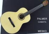 Guitarra Palmer Mod. Candita Cuerdas Nylon Cubierta Pino Abeto Solido Caja Sapelly Incluye Funda Super Acolchada con Equalizador Activo  7545 con Afinador