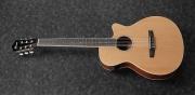 Guitarra Ibanez  AEG 7 TN Cuerdas Nylon con Equalizador Ibanez 3 bandas AEQ 27 T