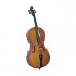 Freeman Cello 4/4 Serie 100 Classic FRVSC1 Incluye Funda y Arco