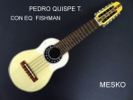 Pedro Quispe T. Charango Profesional con Equalizador Fishman ISYS con Afinador, Construido con Tapa de Pino Abeto Caja de Naranjillo, Puente y Diapason de Jacaranda, Incluye Funda   # 40